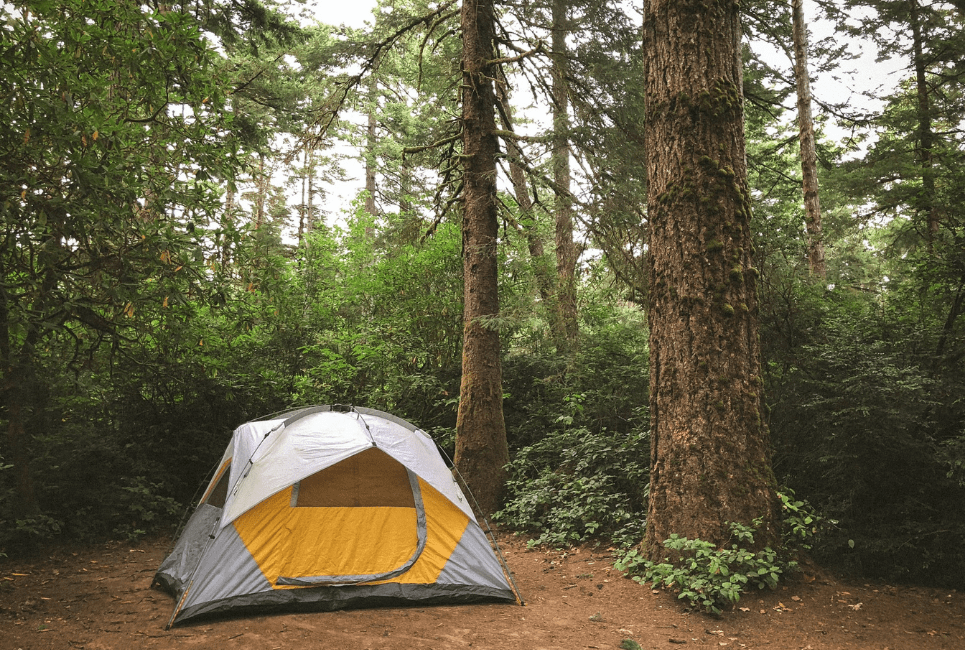 North Face Kaiju 6 Review [2021]   Is the Kaiju 6 Person Tent Worth it?