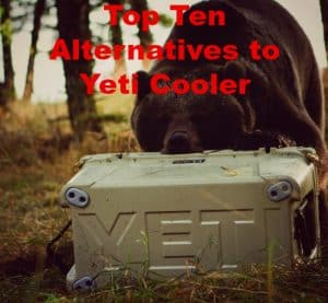 Best Alternatives to Yeti Cooler | Coolers Like YETI [2021 Edition]