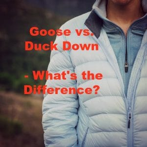 Goose vs Duck Down – What's the Difference?