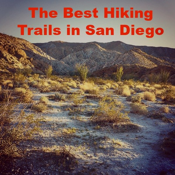 The Best Hiking Trails in San Diego
