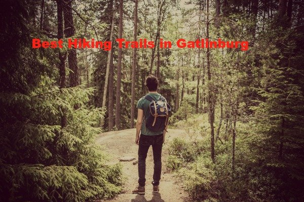 The Best Hiking Trails in Gatlinburg That You Need to Know Of!