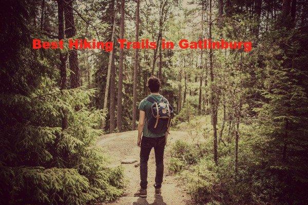 Best Hiking Trails in Gatlinburg