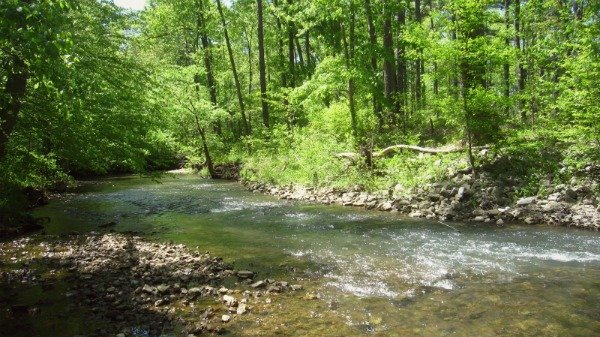 Talladega Pinhoti Trail