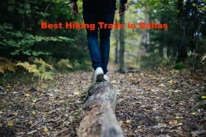The Best Hiking Trails in Dallas – Don't Miss Out!