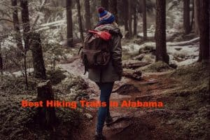 The Best Hiking Trails in Alabama You Should Not Miss