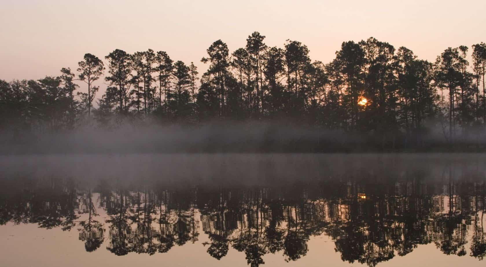 perdido river nature preserve