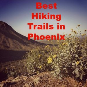 The Best Hiking Trails in Phoenix That You'll Love