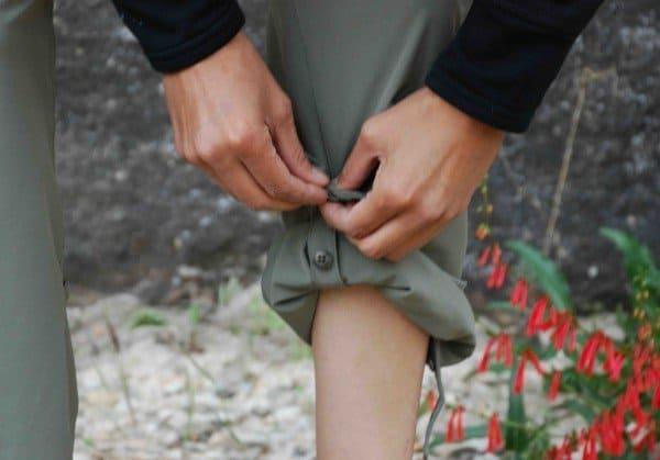 roll-up pants feature buttons on lower legs or elastic in their cuff