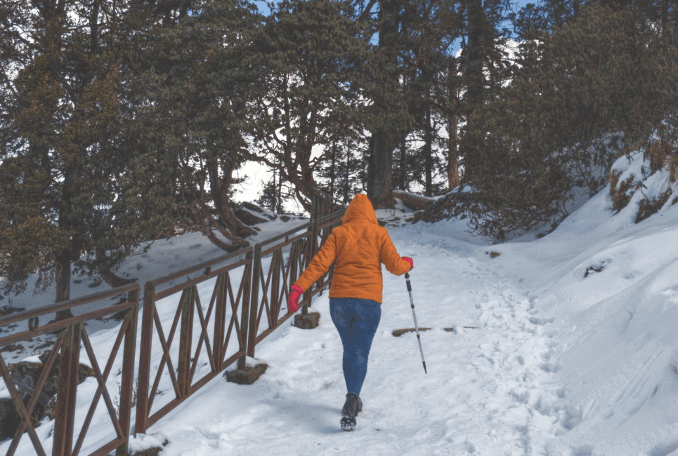Mammut vs Arc'teryx Jackets – Which is the Best Jacket?