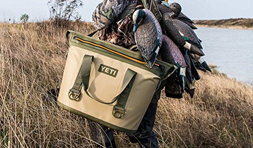 Engel Coolers vs YETI - Which is the Best Cooler? - All Outdoors Guide