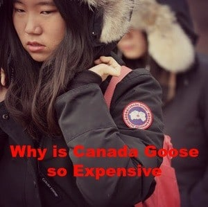 Read more about the article Why is Canada Goose so Expensive?